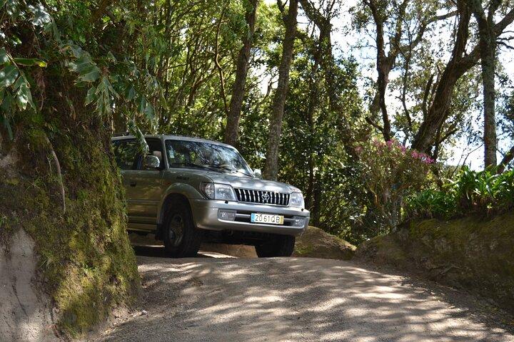 Excursão particular em 4x4 no litoral de Açores saindo de Ponta Delgada, ,