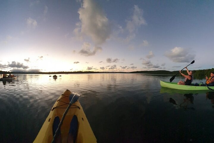 Bioluminescent Bay Night Kayaking 8:00pm   Transportation from San Juan, Luquillo, PUERTO RICO