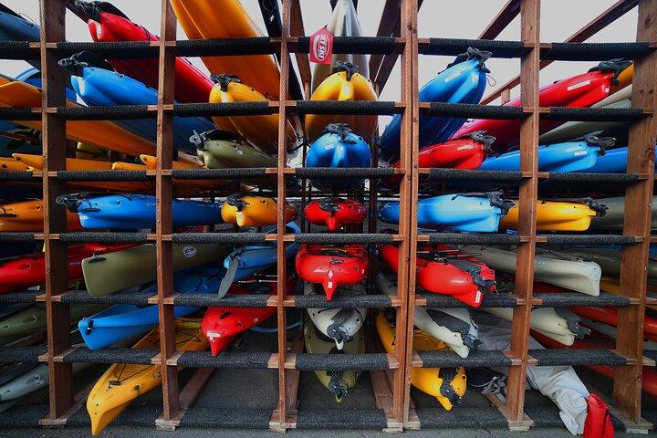 Dana Point Harbor Kayaking and Hiking Tour, Dana Point, CA, ESTADOS UNIDOS