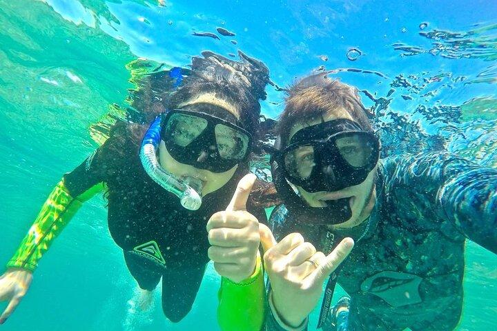 2.5hr Gold Coast Kayaking & snorkelling tour, Surfers Paradise, AUSTRALIA