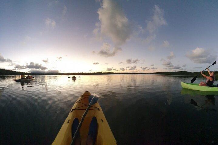 Paseo nocturno en kayak en la bahía bioluminiscente a las 20.00 h | Laguna Grande, Fajardo, ,