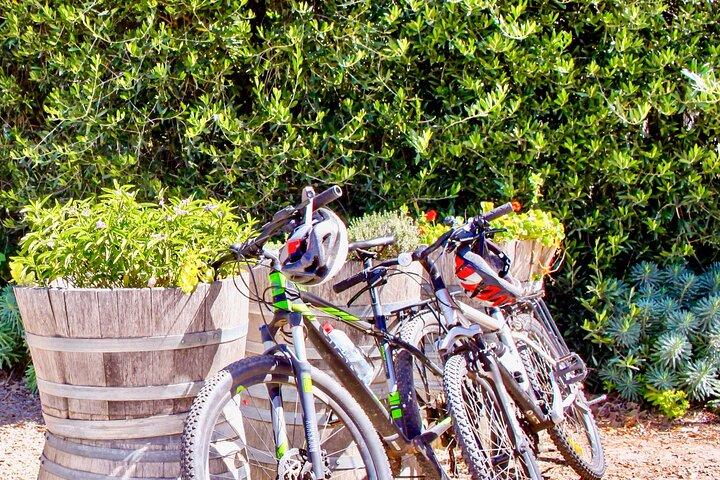 Mornington Peninsula Victoria | Food & Wine Region | Self-Guided Cycle Tour, Peninsula de Mornington, AUSTRALIA