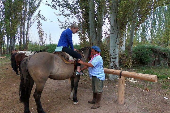 Passeios a cavalo pelas vinhas com almoço gourmet assado, Mendoza, ARGENTINA