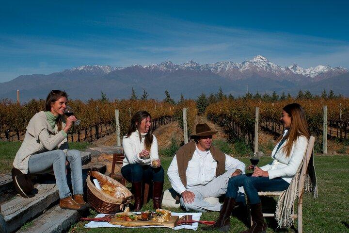 Viagem diurna particular: degustação de vinhos em Mendoza com de almoço, Mendoza, ARGENTINA