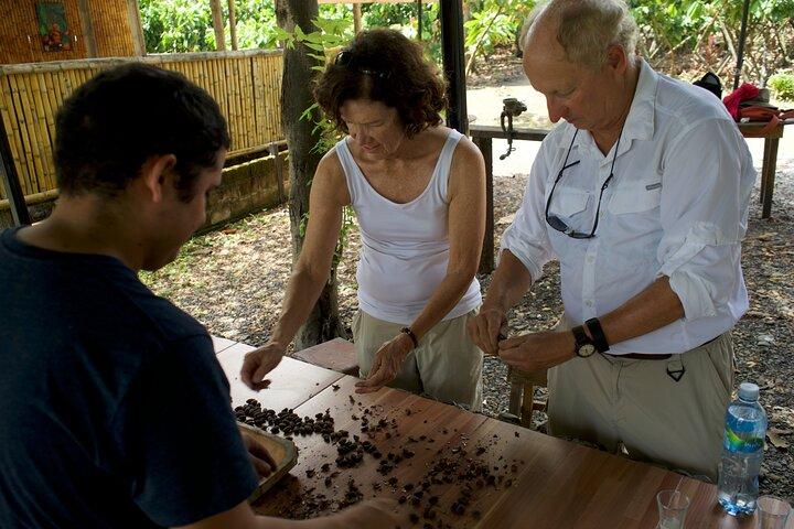 Tour privado de dia completo por Guayaquil y visita una plantacion de cacao, Guayaquil, ECUADOR