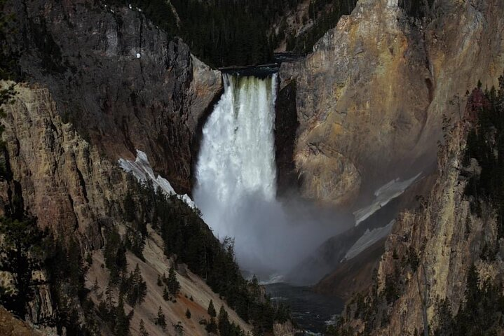 With Social Distancing Small Group Tours of the Lower Loop of Yellowstone, Cody, WY, ESTADOS UNIDOS