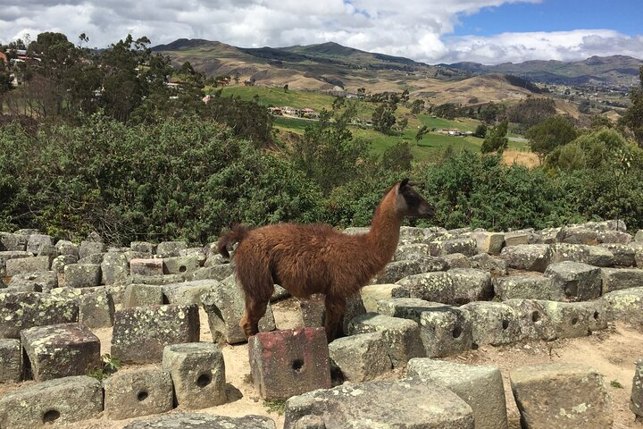 Ingapirca Ruins Day-Tour from Cuenca with Small Group, Cuenca, ECUADOR