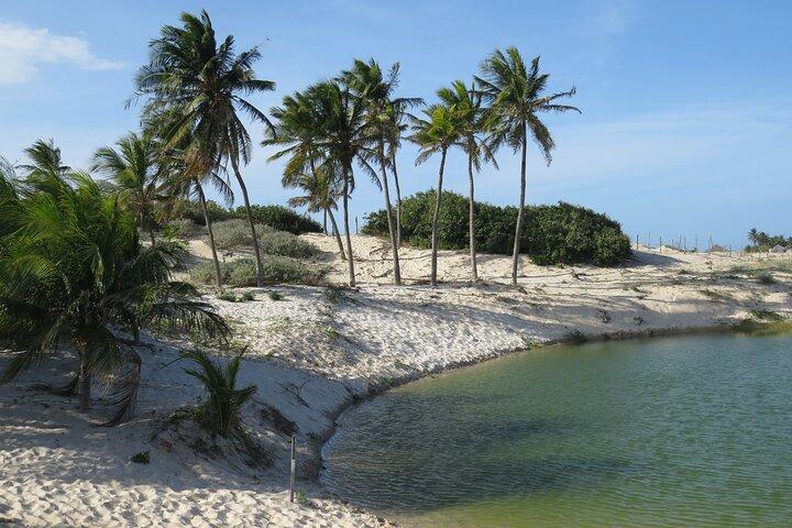 Fortaleza Like a Local: Customized Private Tour, Fortaleza, BRASIL