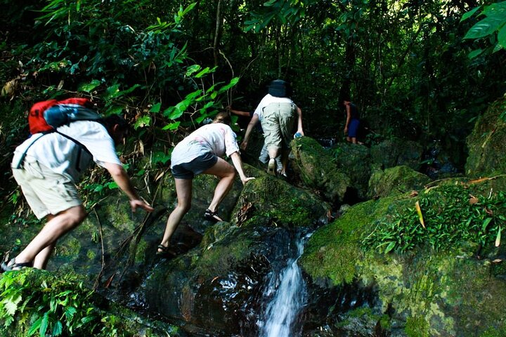 2-Day Small-Group Tour in Khao Sok National Park, Surat Thani, TAILANDIA
