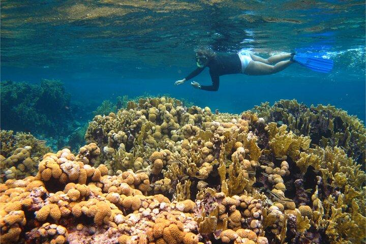 Tour de Snorkeling en San Andres, San Andres, COLOMBIA