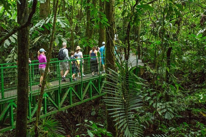 Combo Tour Arenal: Puentes Colgantes + Aguas termales + Catarata desde San José, San Jose, COSTA RICA