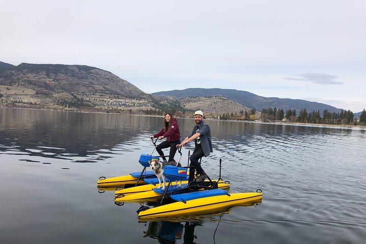 Kamloops: Riverside Park Self Guided 1 Hour Water Bike Rental, Kamloops, CANADÁ