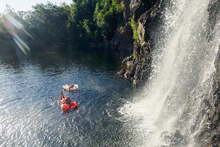 Litchfield Waterfalls Wildlife Tour, Darwin, AUSTRALIA