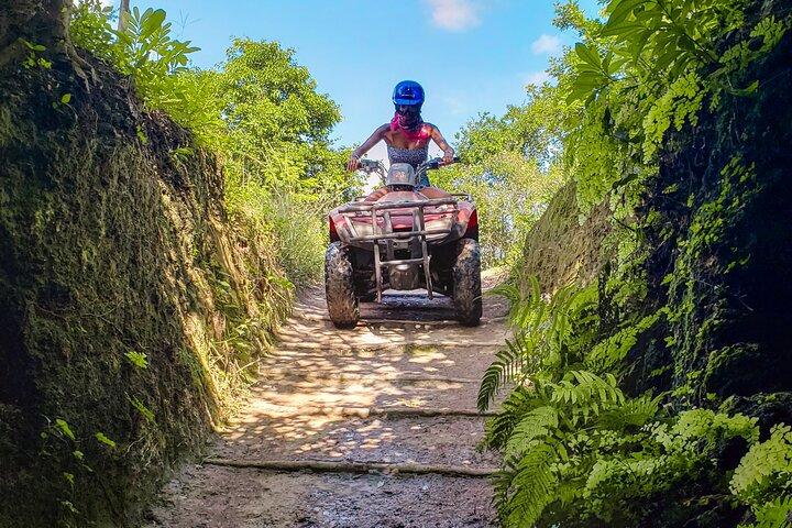 Cozumel Driving Tour Snorkel -Jade Cavern & Punta Sur, Cozumel, MÉXICO