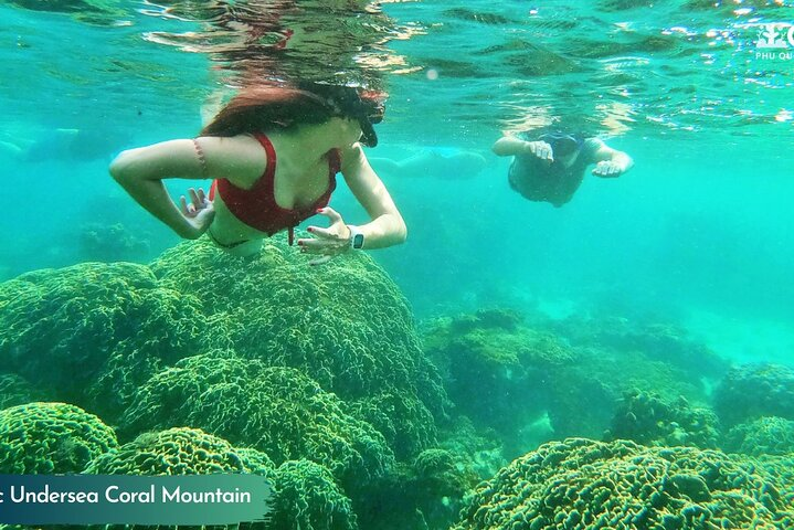 OnBird - Small group snorkeling trip with touristy-avoiding route (max 8 pax), Phu Quoc, VIETNAM