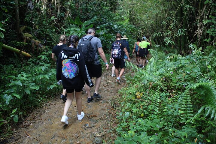 Rainforest Nature Walk & Bio Bay Night Kayaking Combo with Transportation, ,