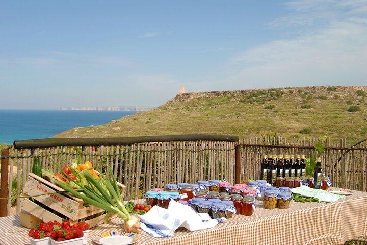 Private 3-hour Farmers' Meal Experience in Malta, Mellieha, MALTA