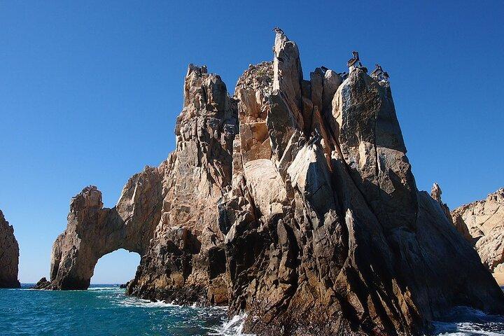Cabo San Lucas Glass Bottom Boat, ,