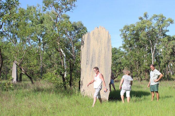 Jumping Crocodile Cruise and Berry Springs Nature Park, Darwin, AUSTRALIA