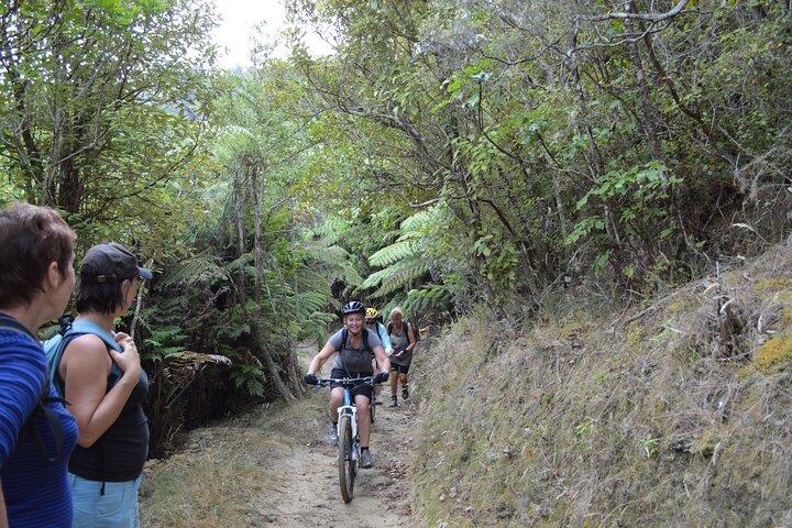 Great Lake Trail Lake Taupo 2-Day Mountain Biking Tour, Taupo, NUEVA ZELANDIA