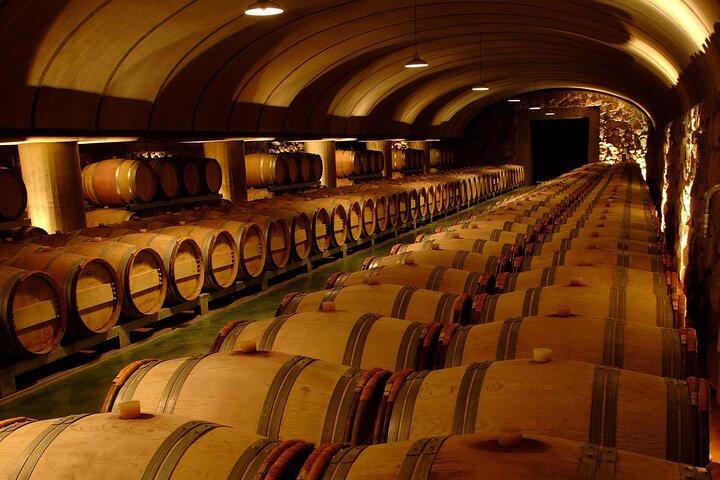 Mendoza Wine Tour with Lunch, Mendoza, ARGENTINA