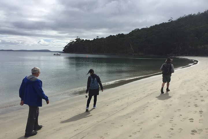 Small-Group Day Trip from Hobart to Bruny Island, Hobart, AUSTRALIA