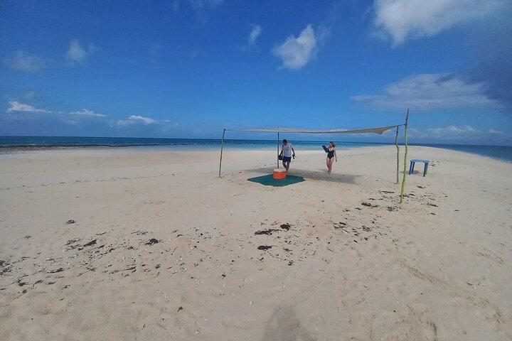Full-day Prison Island and Nakupenda Sandbank with Lunch buffet, Zanzibar, TANZANIA