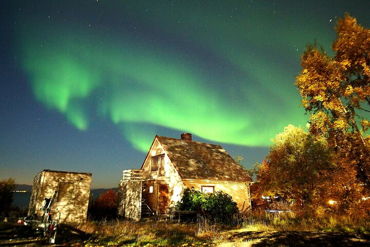 Northern Lights tour with Alta Adventure, Alta, NORWAY