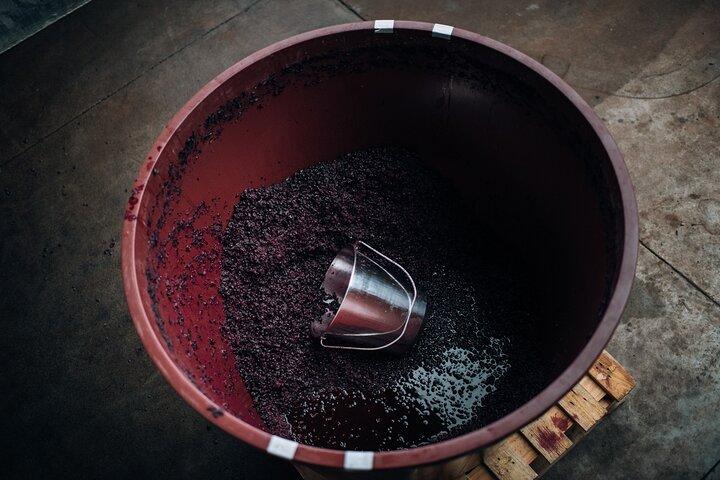 Private Tastings / Wine & Cheese Pairing, Busselton, AUSTRALIA