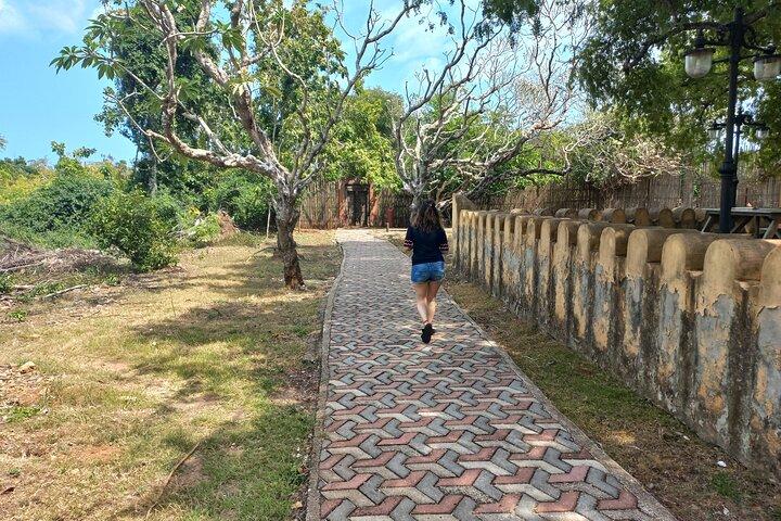 Prison Island, Nakupenda and Stone Town Tour | Full-day + Lunch Buffet, Zanzibar, TANZANIA